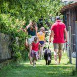 Urlaub mit Haustier, Oberpfälzer Wald